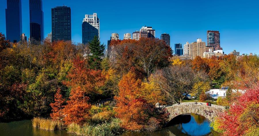 8 Things You Should Take On Your New York Trip